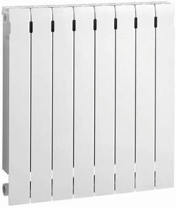 Radiateur Basse Temperature Fonte : photo radiateur fonte alu brico depot ~ Edinachiropracticcenter.com Idées de Décoration