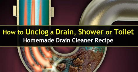unclog  drain shower  toilet homemade cleaner
