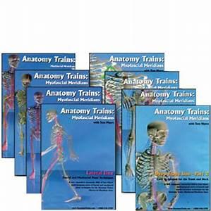 Anatomy Trains 8 Dvd Set  Vols  3 To 10