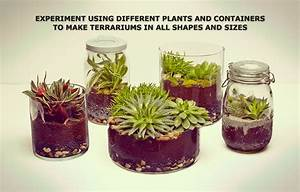 Make your own terrarium - IKEA Need: Sheet (sphagnum peat ...