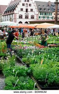 Outdoor Shop Freiburg : outdoor stalls on market day market place wokingham berkshire stock photo royalty free image ~ Yasmunasinghe.com Haus und Dekorationen