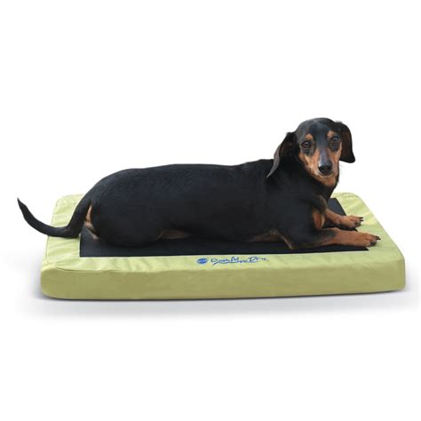 k h green comfy n dry indoor outdoor orthopedic dog bed