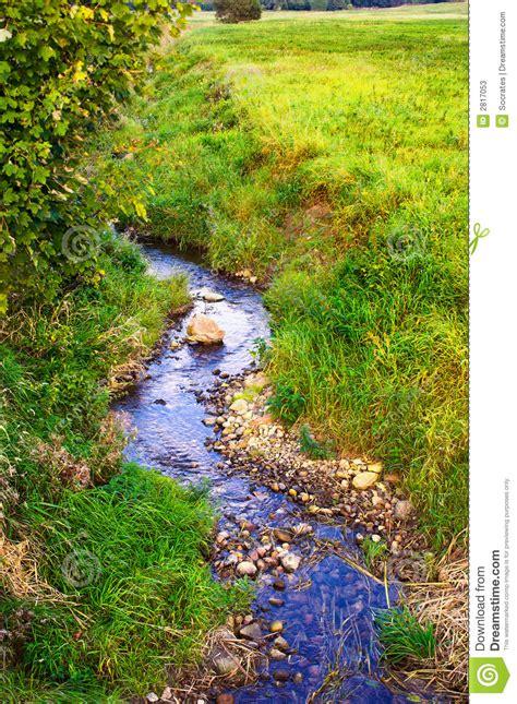 Small Creek Stock Image Image Of Backgrounds, Botanical
