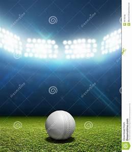 Cricket stadium and ball stock illustration image