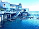 Adventures at the Monterey Bay Aquarium – Monterey Farmgirl