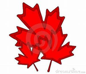 Cartoon Maple Leafs - ClipArt Best