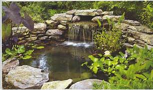 Water Garden Water Garden Landscaping Ideas