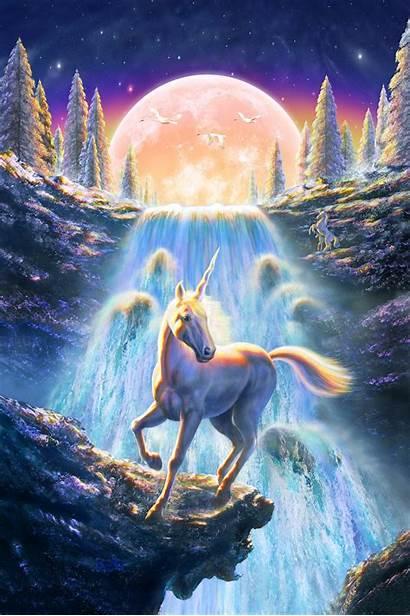 Unicorn Unicorns Fantasy Sunset Mystical Wallpapers Painting