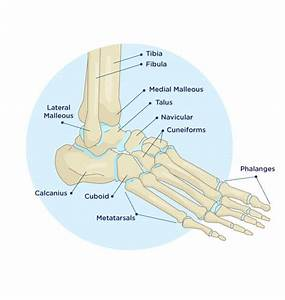 Which Ankle Injuries Usually Require Surgery