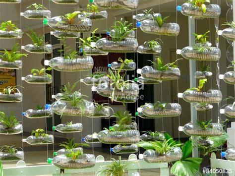 pflanzen bewässern pet flaschen quot vorhang aus plastikflaschen und pflanzen quot stockfotos und lizenzfreie bilder auf fotolia