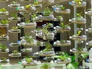 Pflanze In Flasche : vorhang aus plastikflaschen und pflanzen stockfotos und lizenzfreie bilder auf ~ Whattoseeinmadrid.com Haus und Dekorationen