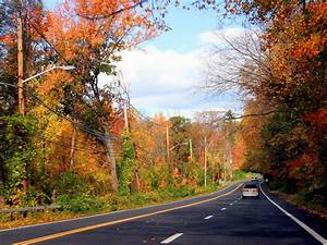Fall Foliage Road Trips