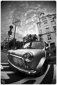Mini Black and White