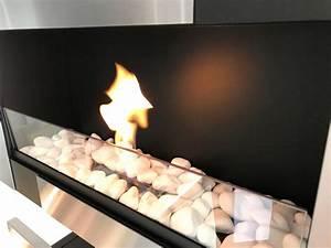 Ethanol Kamin Tüv : t v gepr ft bio kamin bio ethanol kamin wandkamin chemin e 65 cm mit glasscheibe ebay ~ Sanjose-hotels-ca.com Haus und Dekorationen