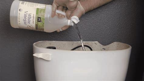versez du vinaigre blanc dans vos toilettes et tirez la chasse le r 233 sultat est magique
