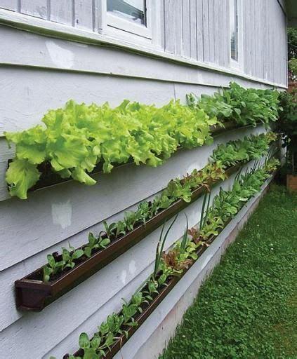 best 25 vertical gardens ideas on
