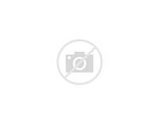 Professor Ivy - Pokemon  Professor Ivy