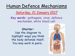 aqa infection and response human defence mechanisms by