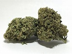Mr. Nice | Marijuana Strain Reviews | AllBud