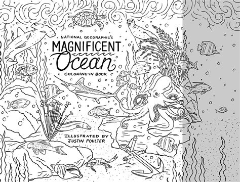 national geographic coloring book  behance