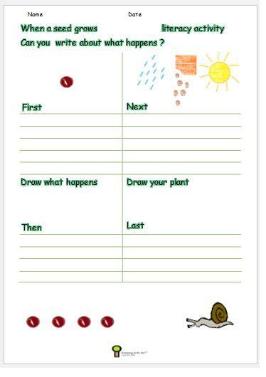 growing  seed worksheet plant worksheet activity science