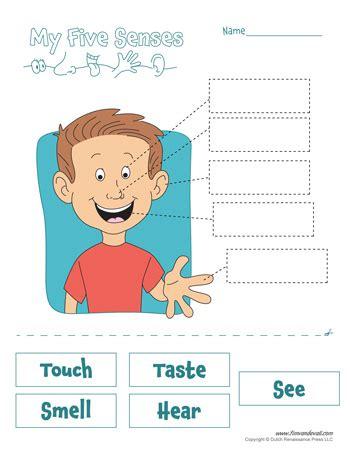 senses worksheets  kids  senses craft