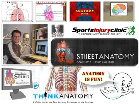 View and explore systems overviews, skeletal systems, muscle physiology, muscular system, nervous system, circulatory system, respiratory system, urinary system. Get Body Smart Anatomy : Getbodysmart Ict Portfolio Jd - littlemisstired