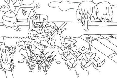 vegetable garden coloring pages printable food