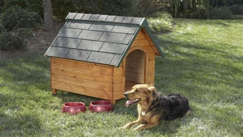cool projects     sheet  plywood dog house heater dog house plans build