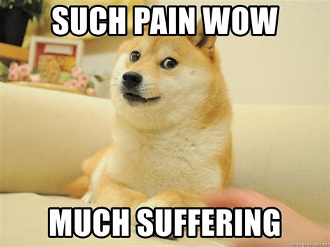 Much Wow Meme - such pain wow much suffering so doge meme generator