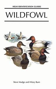 Wildfowl  An Identification Guide To The Ducks  Geese And