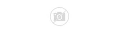Skyscraper Reflection Illinois Multiple Chicago Display Usa
