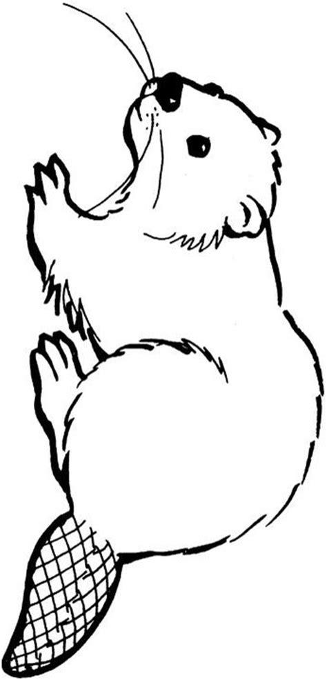 cartoon beaver images clipart