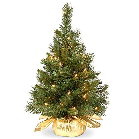 12 foot majestic christmas tree national tree company 2 foot majestic fir pre lit tree with clear lights and gold base