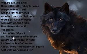 Black Wolf Wallpaper Desktop | www.pixshark.com - Images ...
