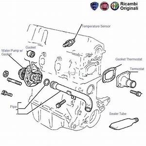 Fiat Palio 1 2  Water Pump And Hoses