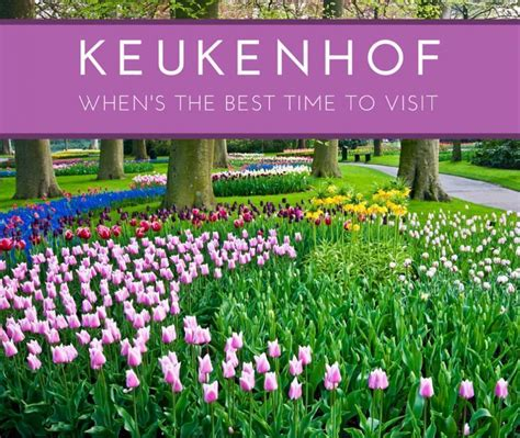Garden Of The Gods Best Time To Visit by The Best Time To Visit Keukenhof Gardens Lisse The