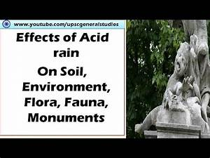 Effects of acid rain on soil, Flora fauna, Monuments ...