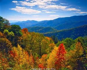 281 best images about Smoky Mountain Inspiration on ...