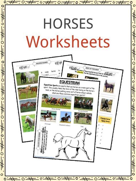 horse facts  worksheets  kids kidskonnect
