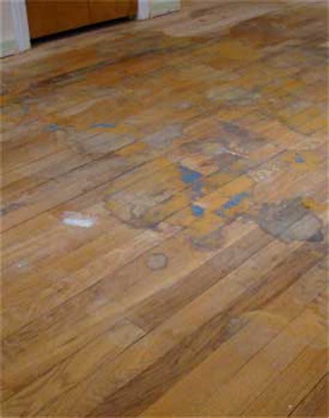 Dried Urine On Hardwood Floors by Repair Minor Hardwood Floor Problems
