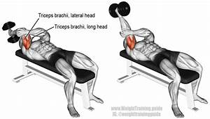 Lying One-arm Dumbbell Triceps Extension