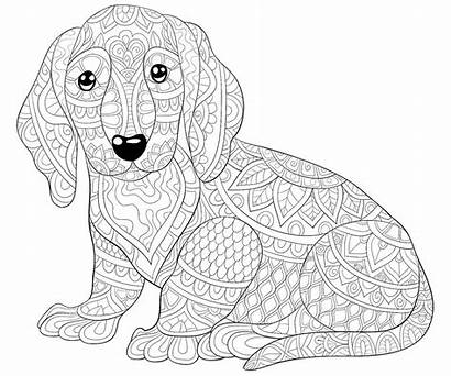 Coloring Dog Pages Dogs Printable Puppy Mom