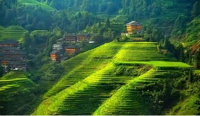 China Landscape Hill Field Terraced Yunnan Desktop