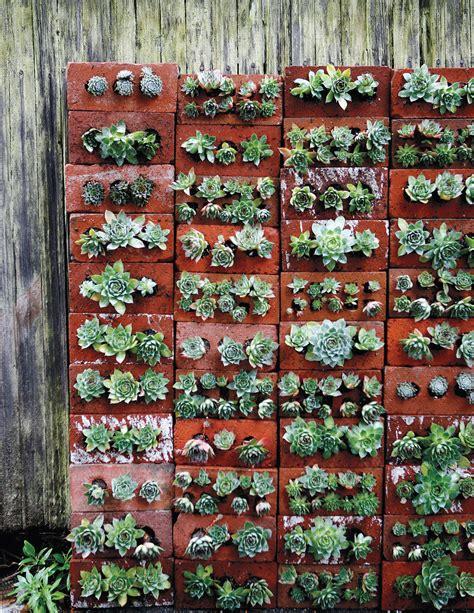 the wall that succulents built a creative d i y