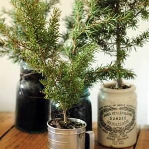 Alternative To A Full Tree Christmas Tree Ideas} Tip Junkie
