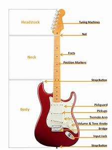 Electric Guitar Buyers Guide