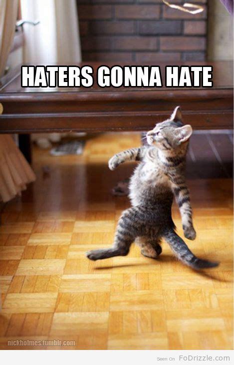 Mere Cat Meme - most funny animal memes and humor pics sjove ting og sjov