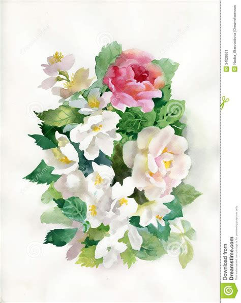 watercolor roses bouquet stock illustration image  leaf