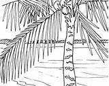 Coloring Boardwalk Sunrise Ocean Palm Tree Adult Themed Embroidery Pattern Scene 48kb 270px sketch template
